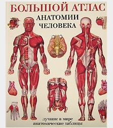 Махиянова Е. (пер.) Большой атлас анатомии человека перез в худож большой атлас анатомии человека