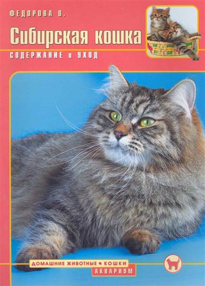 Сибирская кошка Содержание и уход