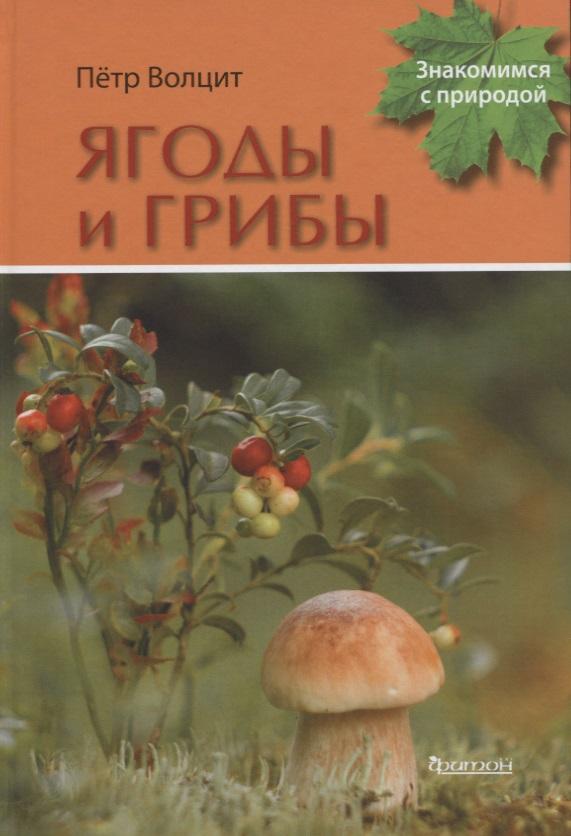 Волцит П. Ягоды и грибы