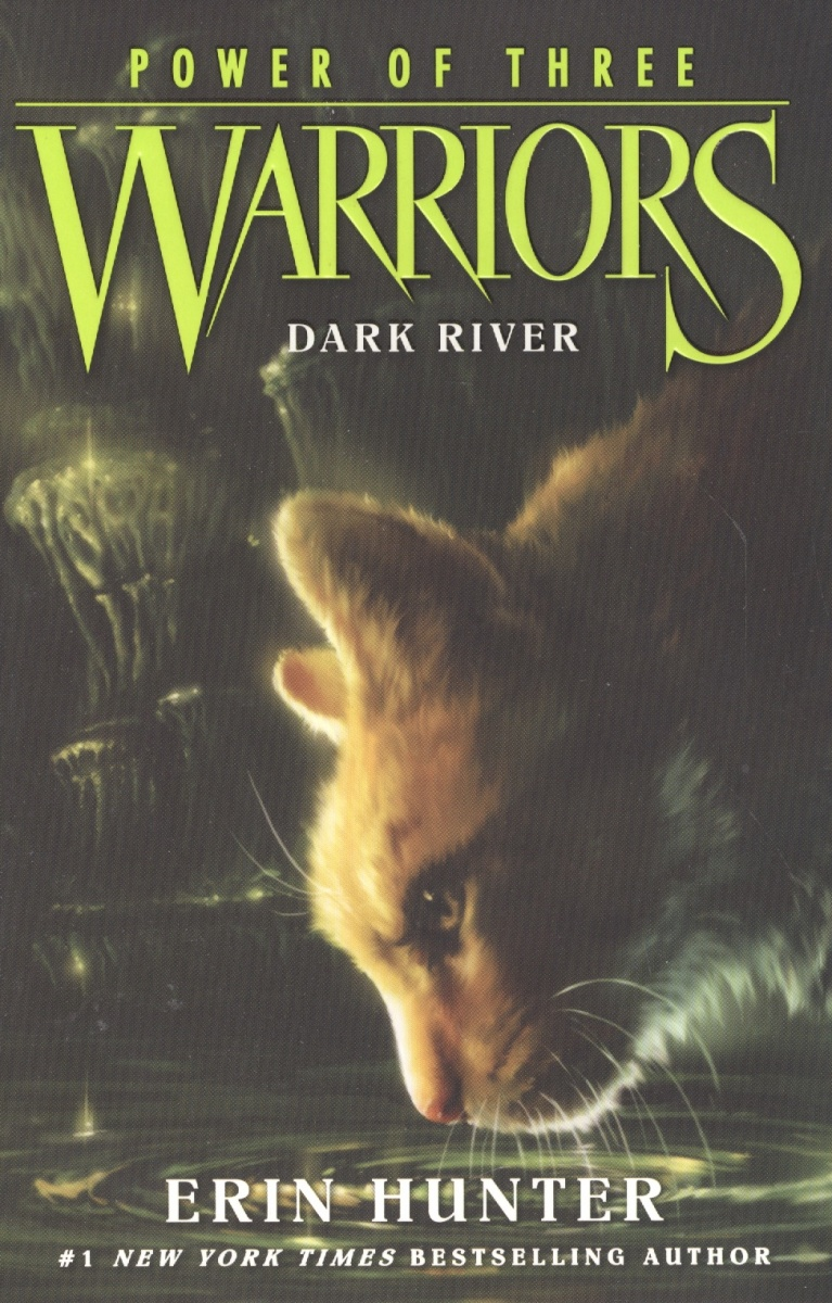 Hunter Е. Warriors: Power of Three #2: Dark River the dark river