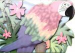 Селиверстова Д. Попугай-говорун селиверстова д пер вежливый мишка
