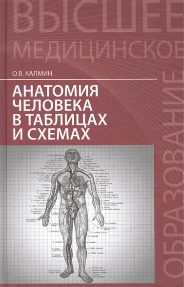 купить Калмин О. Анатомия человека в таблицах и схемах. Учебное пособие по цене 519 рублей