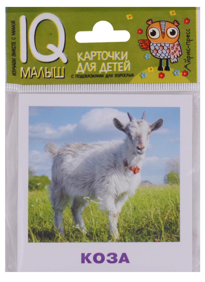 цены Ходюшина Н. Домашние животные. Карточки для детей с подсказками для взрослых