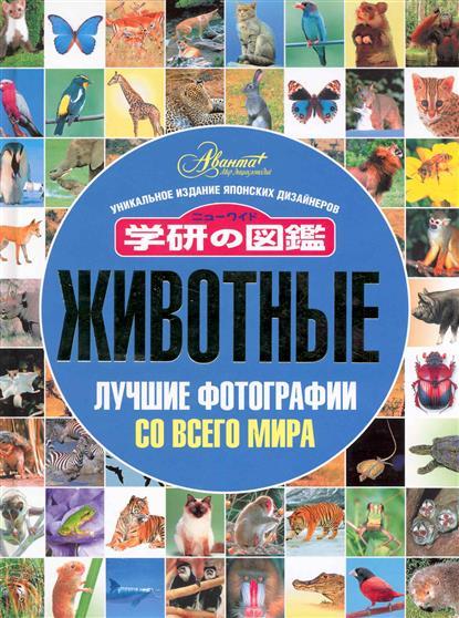 Беньковская М. (пер). Животные Лучшие фотографии со всего мира pep футболка pep модель 2579923