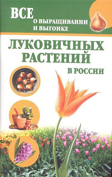 Все о выращивании и выгонке луковичных растений в России