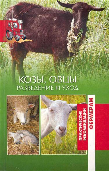 Козы овцы Разведение и уход