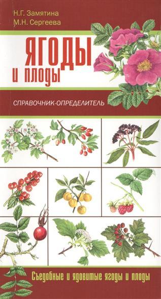 Сергеева М., Замятина Н. Грибы. Ягоды и плоды. Справочник-определитель