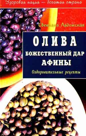 Олива Божественный дар Афины
