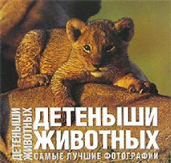 Ильдос А. Детеныши животных. Самые лучшие фотографии детеныши животных
