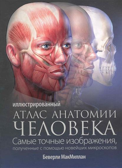 МакМиллан Б. Иллюстрированный атлас анатомии человека спектор анна артуровна большой иллюстрированный атлас анатомии человека