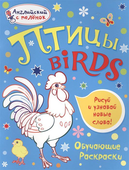Ванагель Т. Птицы = Birds domestic birds домашние птицы плакат