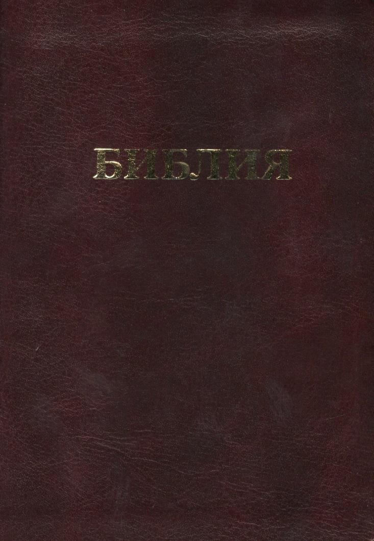 Библия. Книги Священного Писания Ветхого и Нового Завета. Канонические. В русском переводе с параллельными местами и приложением