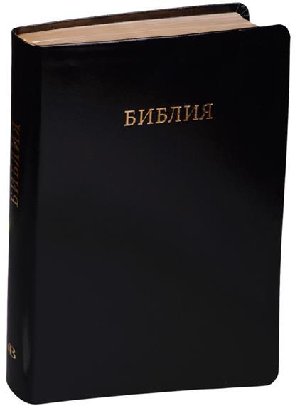 Библия. Книги Священного Писания Ветхого и Нового Завета. Канонические с параллельными местами и приложением (черная кожа)