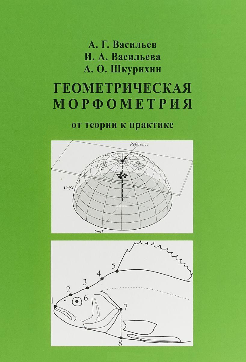 Геометрическая морфометрия. От теории к практике