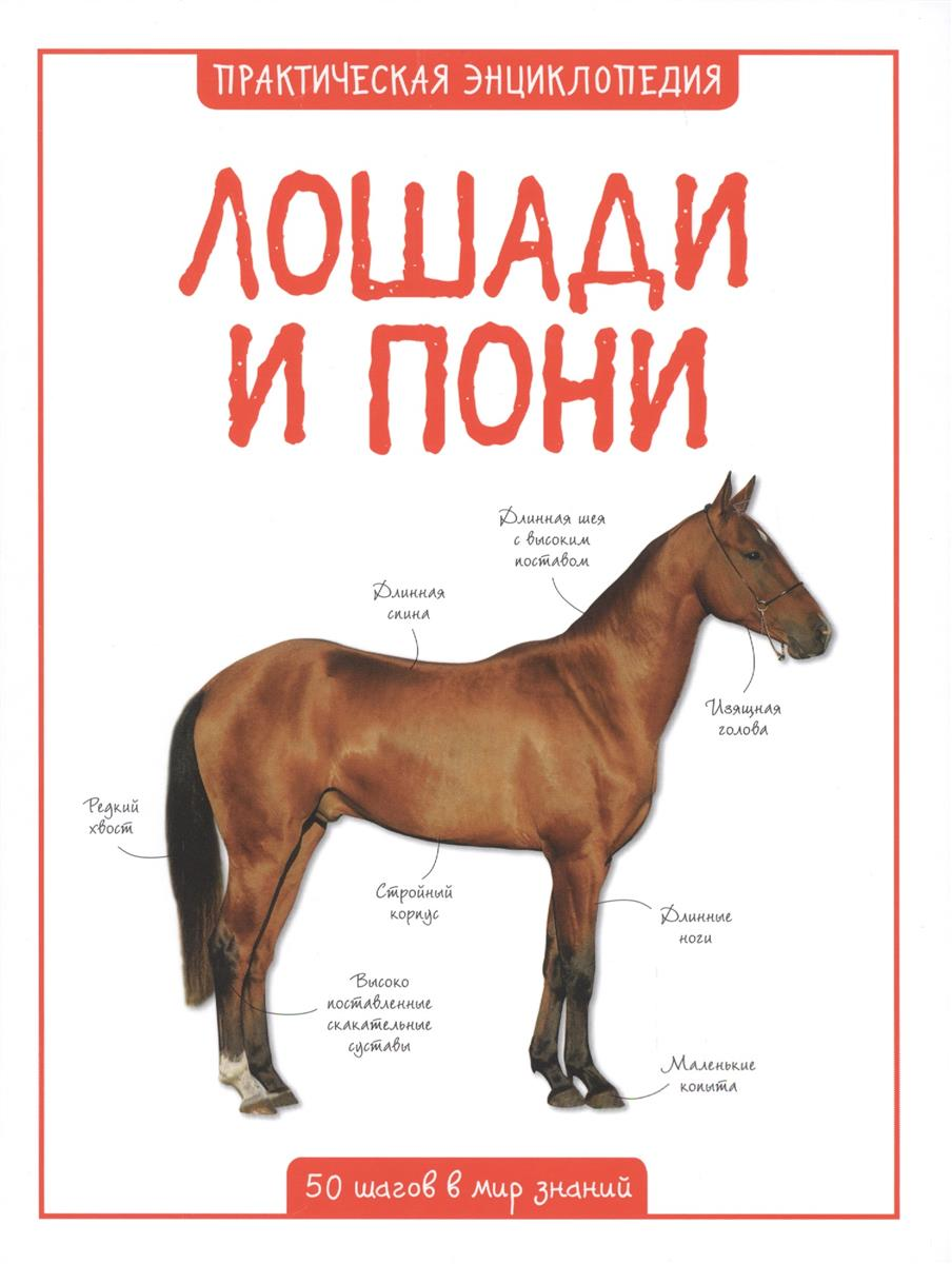 Бедуайер К. Лошади и пони. 50 шагов в мир знаний де ла бедуайер к лошади и пони энциклопедия для детей