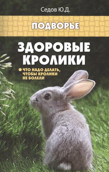 Здоровые кролики: Что надо делать, чтобы кролики не болели