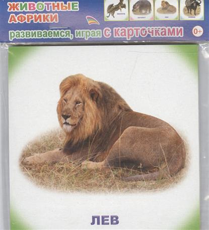 Обучающие карточки. Животные Африки проф пресс обучающие карточки умный чемоданчик животные и их детеныши