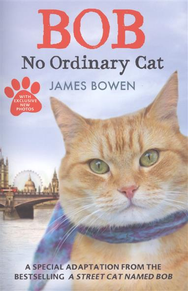 Bowen J. Bob: No Ordinary Cat bowen j a street cat named bob how one man and his cat found hope on the streets