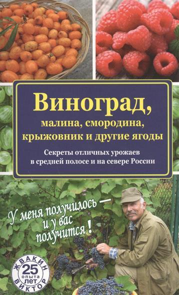 Виноград, малина, смородина, крыжовник и другие ягоды. Секреты отличных урожаев в средней полосе и на севере России