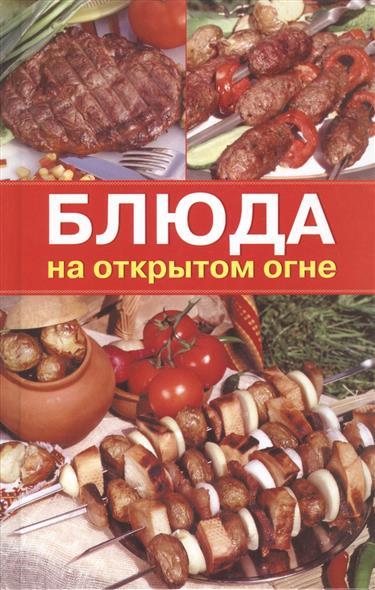 Румянцева И. Блюда на открытом огне шашлыки гриль и другие блюда на огне
