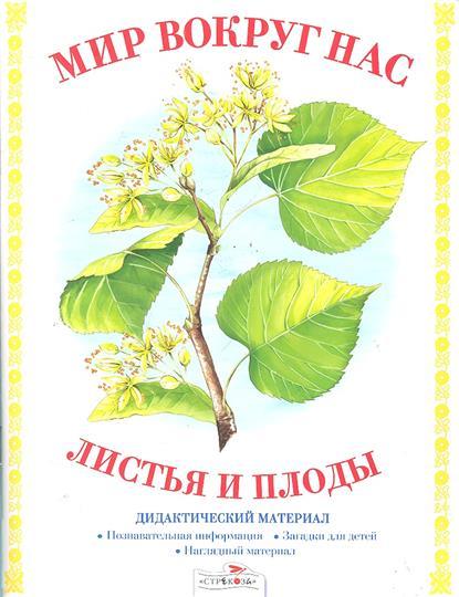 Листья и плоды Дидактический материал