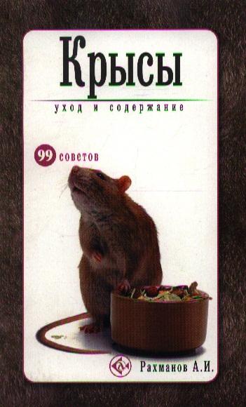 Крысы Уход и содержание