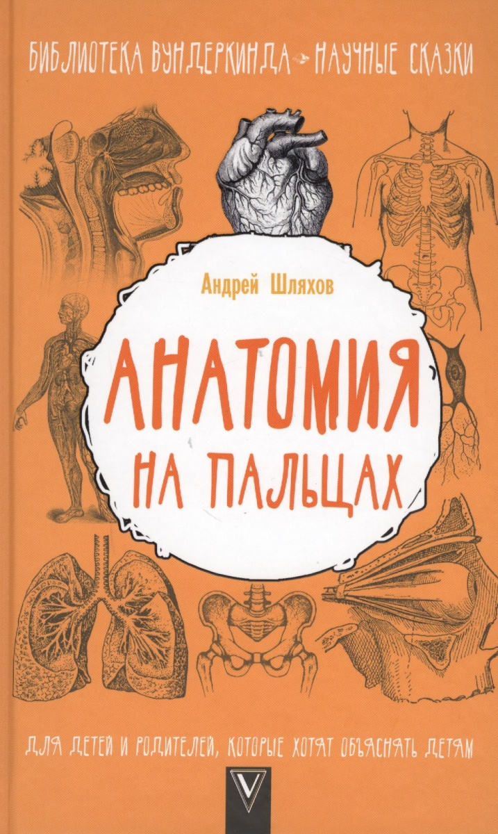 Шляхов А. Анатомия на пальцах а а никитина анатомия человека