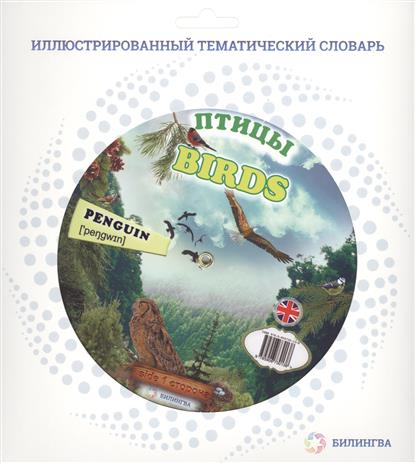 Птицы = Birds domestic birds домашние птицы плакат