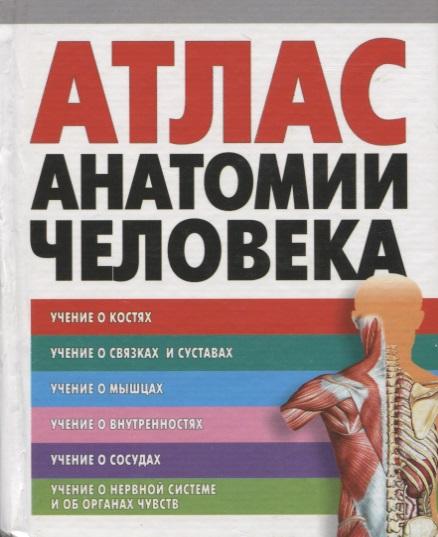 Воробьев В. Атлас анатомии человека перез в худож большой атлас анатомии человека