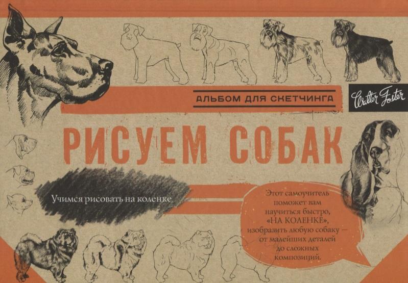 купить Чудова А. (ред.) Рисуем собак. Альбом для скетчинга по цене 194 рублей