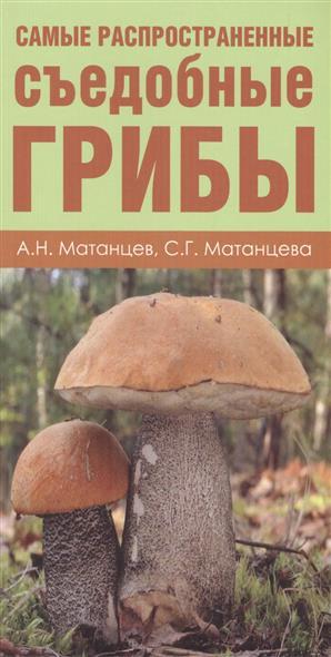 Грибы. Карманный атлас-определитель. Самые распространенные съедобные грибы