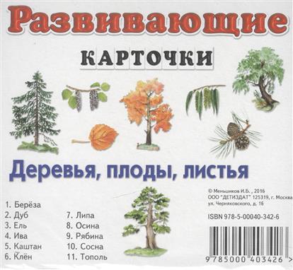 Деревья, плоды, листья. Развивающие карточки