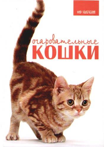 Принс К. Очаровательные кошки цена