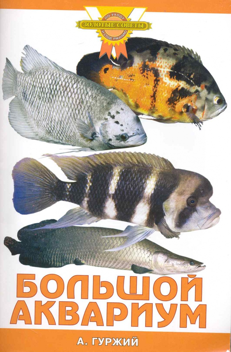 Гуржий А. Большой аквариум а гуржий офисный аквариум