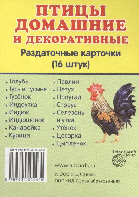 Птицы домашние и декоративные. Раздаточные карточки (16 штук) домашние птицы