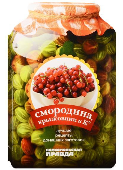 Смородина, крыжовник и К°. 28 лучших рецептов