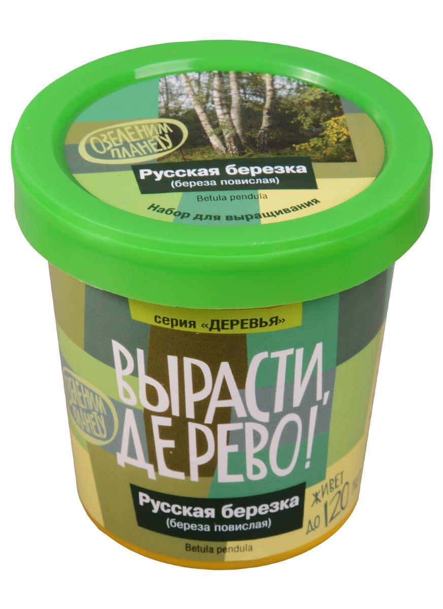 Набор для выращивания Русская берёзка