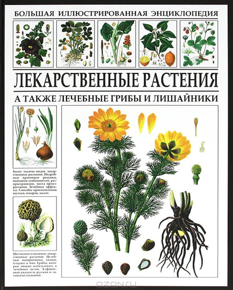 Афонькин С. (выпуск. ред.) Лекарственные растения. Большая иллюстрированная энциклопедия