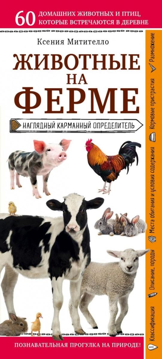 Митителло К. Животные на ферме. Наглядный карманный определитель митителло к б лекарственные цветы и травы наглядный карманный определитель