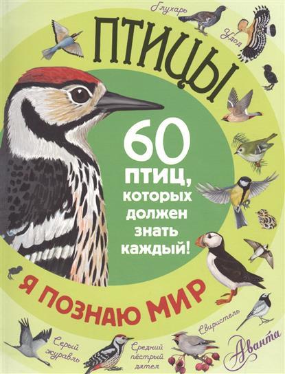 Снегирева Е. Птицы. 60 птиц, которых должен знать каждый! мартин оливер гай маклональд каждый мальчик должен знать