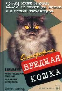 Осторожно вредная кошка