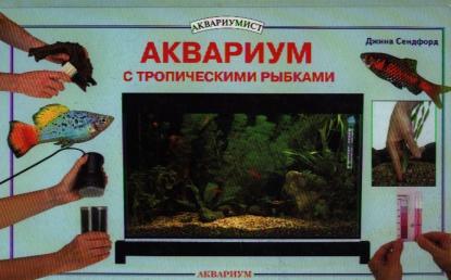 Аквариум с тропическими рыбками