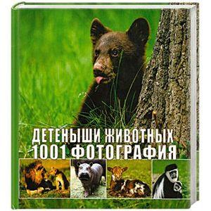Фото - Детеныши животных. 1001 фотография детеныши животных