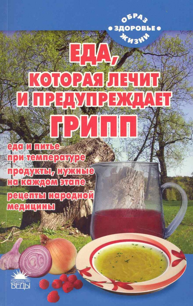 Стрельникова Н. Еда которая лечит и предупреждает грипп еда которая лечит зрение