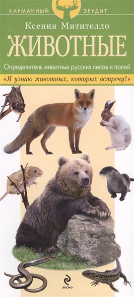 Животные. Определитель животных русских лесов и полей. Данный определитель содержит описания и изображения 60 животных, которые обитают в лесах, на полях и лугах в средней полосе России