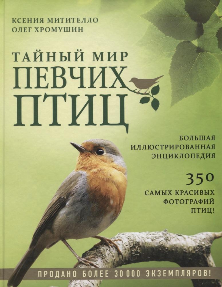Тайный мир певчих птиц