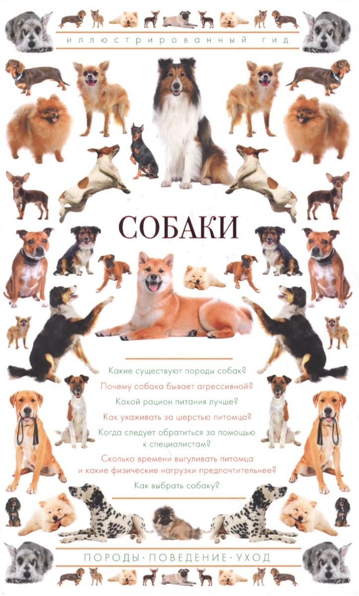 Барановская И. Собаки. Иллюстрированный гид