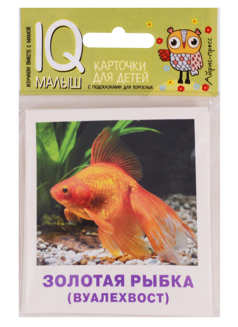 Малунова М. Аквариумные рыбы. Набор карточек для детей аккумулятор digicare plc e8 lp e8 для canon