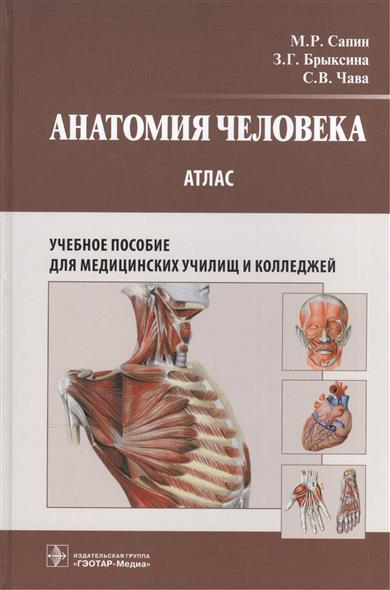 Анатомия человека. Атлас. Учебное пособие для медицинских училищ и колледжей