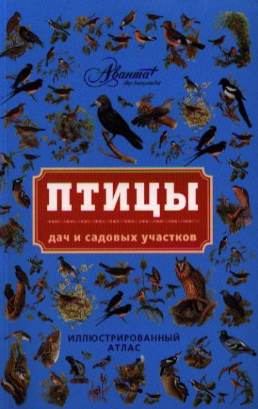 Птицы дач и садовых участков. Иллюстрированный атлас